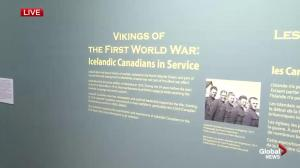 Remembrance Day: Vikings of the First World War
