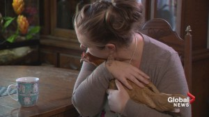 Unconventional Comfort: Calgary sex abuse survivor told she can't keep emotional support animals