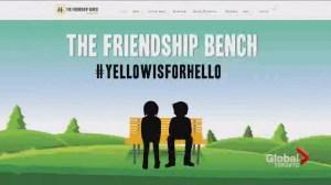 Friendship Bench helps spark conversation about mental illness on campus