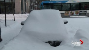 Montrealers dig out after winter storm