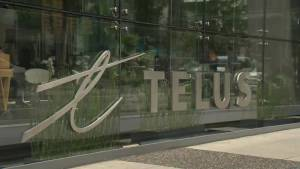 Telus webmail service outage leaves customers fuming