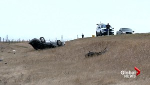 Man killed, woman in critical condition after rollover near High River