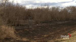 Extremely dry conditions make parts of Saskatchewan high risk for wildfires