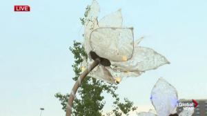 Beakerhead festival underway in Calgary