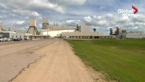 Workers trapped in Saskatchewan potash mine 'safe and comfortable underground'