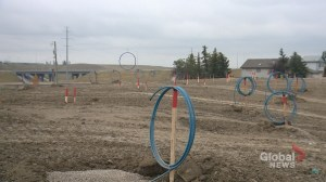 'It's spawning!' Tiny replicas of Calgary's Big Blue Ring spark online hilarity