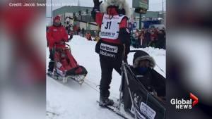 Iditarod's 'last great race' gets underway in Alaska