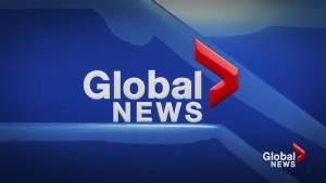 Global News at 5: Lethbridge June 5