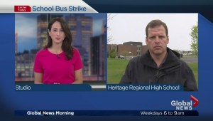 19 School Boards Affected by Bus Strike