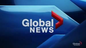 Global News at 5: Jun 11 Top Stories