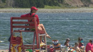 Lifeguard supervision to begin this week