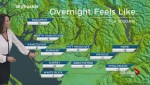 BC Evening Weather Forecast: Dec 4