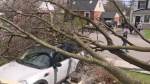 Clean-up underway in Montreal following violent wind storm