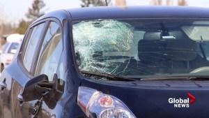 Elderly man struck and killed in Maple Ridge