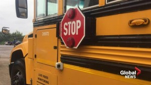 N.B. school district uses camera to catch drivers failing to stop for school buses