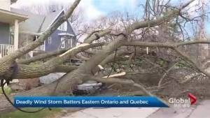 Ferocious windstorm batters Eastern Ontario and Quebec