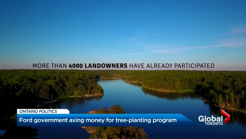 Ontario government cancels program aimed at planting 50 million trees
