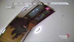 CCTV shows art theft at Calgary gallery
