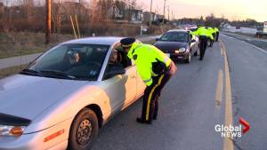 Young Canadians perceive alcohol as less dangerous than cannabis while driving: study