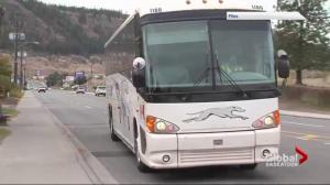 Ont. bus company planning Saskatchewan expansion after Greyhound departure