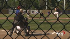 Baseball in Lethbridge seeing a rise in popularity