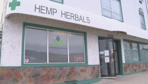 West Kelowna pot shops ordered to shut down