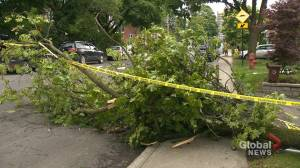 NDG cleans up after powerful thunderstorm