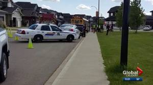 Red Deer woman charged with impaired driving after school bus hits tree
