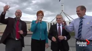 Trump's presidency celebrated by Australia's right-wing leaders with champagne