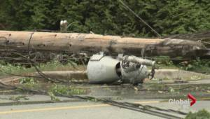 Massive storm hammers southern B.C., now clean-up begins