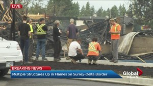 Under-construction townhouse complex goes up in flames along Surrey-Delta border