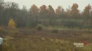 Critics worry new bill will mean development on Ontario Greenbelt