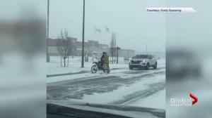 Saskatoon city crews respond to Saturday's snowfall