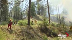 B.C. firefighters gather in Penticton for wild-land fire training