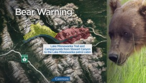 Man charged by bear, trail closed in Banff National Park