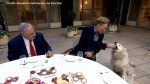 Conan O'Brien enthralled by Israeli dog who eats cucumbers
