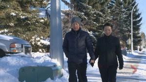South Korean family fights to return to southern Alberta