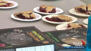 Edmonton students celebrate Pi Day with tasty treats