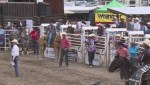 Stampede central to small town life in Falkland