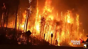 Wildfire that ravaged Fort McMurray extinguished after 459 days