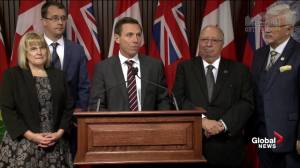Patrick Brown attacks Wynne government over Global News story