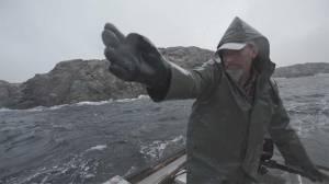 EXTRA: An Oil Spill a Day