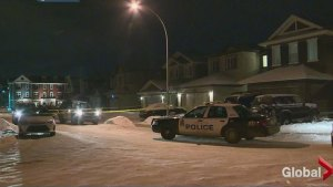 Multiple homicides in Edmonton and area