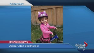 Amber alert issued for abducted toddler