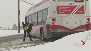 Calgary transit drivers look for relief with early start to winter driving conditions