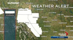 Snowfall warnings in place in western Alberta