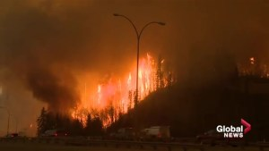 Reports into Fort McMurray wildfire cites communications breakdown in early days