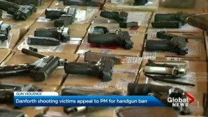 Danforth victims appeal for change to hand gun laws