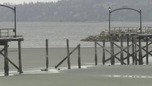 New fundraising campaign to rebuild White Rock pier