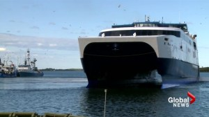Bay Ferries CEO faces questions over Bar Harbor service at Nova Scotia legislature